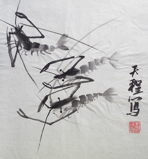 Chinese Ink Shrimp