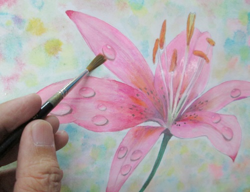 watercolour lily flower