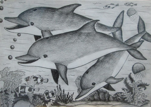 Children Art Pencil Sketching Dolphin