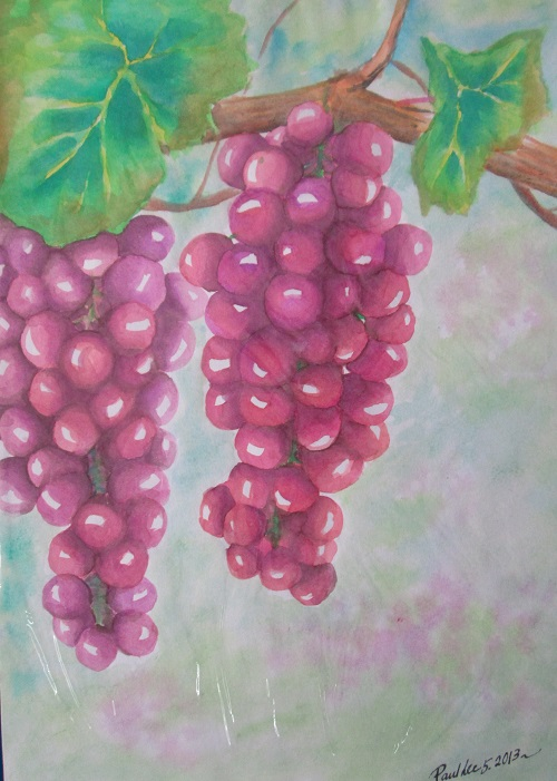 Water colour Grapes 2