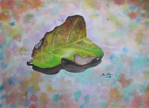 Water colour Leaf
