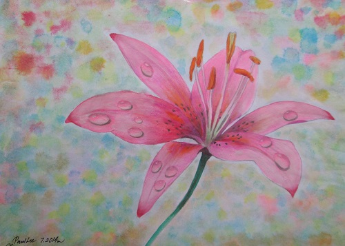 Water Colour Lily Flower