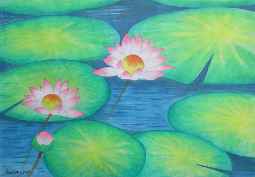 Water colour Water lily 2