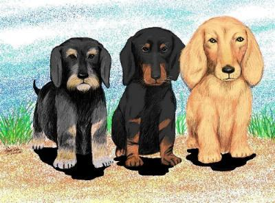 Digital Art Puppies