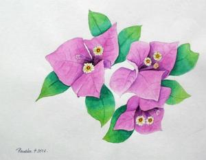 Water Colour - Flower